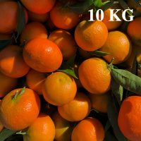 Frische Mandarinen (Clementinen) direkt aus Spanien zu Ihnen nach Hause. Kaufen Sie die frischen Mandarinen direkt von der Plantage. Wir liefern sie Ihnen direkt nach Hause.
